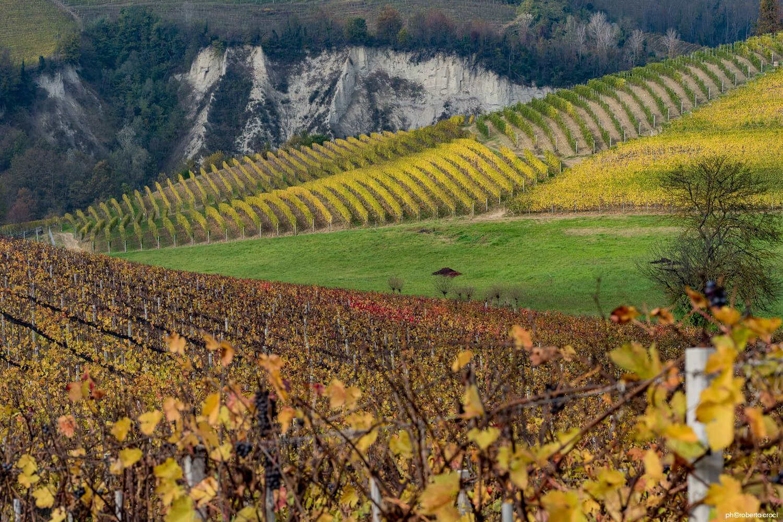 Paesaggi delle langhe roero monferrato roberto croci fotografia